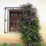 Mission Window With Purple Flowers Art Print
