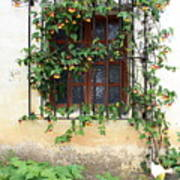 Mission Window With Yellow Flowers Vertical Art Print