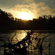 Mississippi River Sunrise Tree Roots Art Print