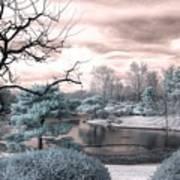 Missouri Botanical Garden Infrared Pond Blue Art Print