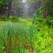 Mist On The Meadow  Art Print
