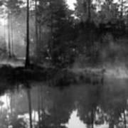 Mist On The Pond Art Print