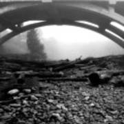 Misty Morning In Black And White Art Print