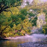Misty Morning On Nariel Creek Art Print