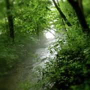 Misty Stream Print by Tina Valvano