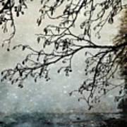 Misty Tide Art Print