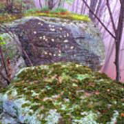 Misty Woodland Scenic Art Print
