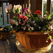 Mixed Basket, Balcony Garden, Hunter Hill, Hagerstown, Maryland, Art Print