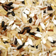 Mixed Rice Print by Fabrizio Troiani