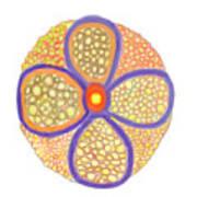 Moasic Flower Art Print