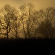 Morning Fog, #2, Smoky Mountains, Tennessee Art Print