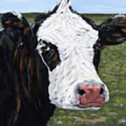 Mohawk Cow Art Print