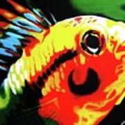 Mohawk Fish Art Print