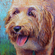 Mojo The Shaggy Dog Art Print