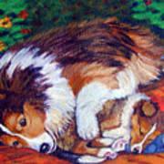 Mom's Love - Shetland Sheepdog Art Print by Lyn Cook