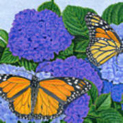 Monarch Butterflies And Hydrangeas Art Print