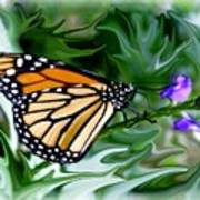 Monarch Butterfly 4 Art Print