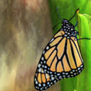 Monarch Butterfly Poised On Green Stem Art Print