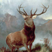 Monarch Of The Glen Art Print