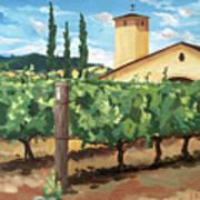 Mondavi Vineyard, Napa Art Print