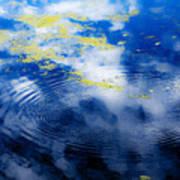 Monet Like Water Art Print