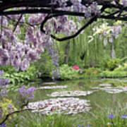 Monet Water Garden Art Print