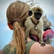 Monkeying Around Art Print