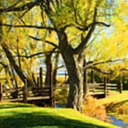 Mono Lake Garden Bridge Art Print