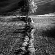 Monochrome Valley Art Print