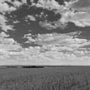 Montana, Big Sky Country Art Print