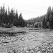 Montana Creek Bend Art Print