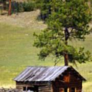 Montana Ranch 2 Art Print