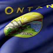 Montana State Flag Art Print