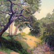 Montecito Dry River Oaks Art Print