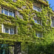 Montmarte Paris Ivy Covered Building Art Print
