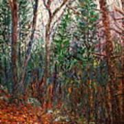 Montville Wood Art Print