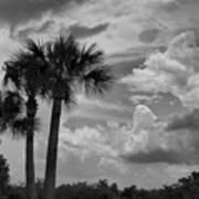 Moody Florida Sky Art Print