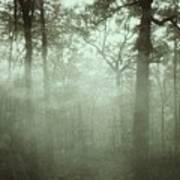 Moody Foggy Forest Art Print