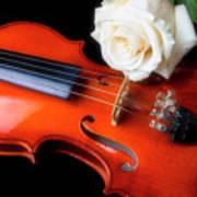 Moody Violin And Rose  Art Print