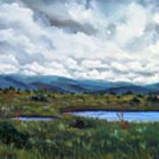 Moody Wetlands Art Print