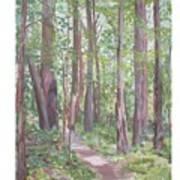 Moon Lake Pathway Art Print