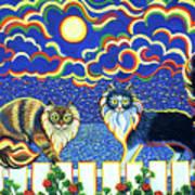 Moon Light Tango Art Print