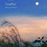 Moon Over Casapaz Art Print