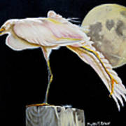 Moon Over Mississippi A Snowy Egrets Perspective Art Print