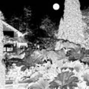 Moon Over Stanley Park Art Print by Will Borden