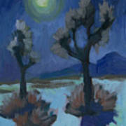 Moonlight And Joshua Tree Art Print