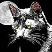 Moonlight Grays Art Print