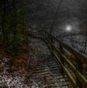 Moonlight On The River Bank Art Print