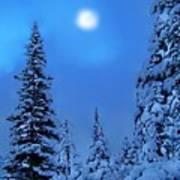 Moonlight  Through The Twilight Haze Art Print