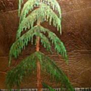 Moonlit Cedar  Art Print